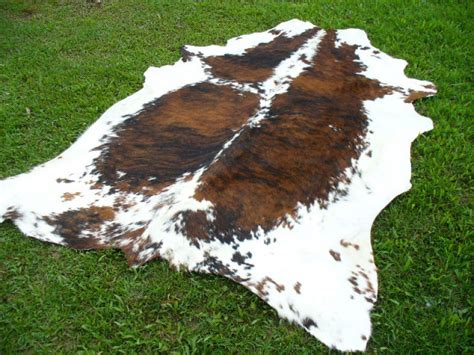 cleaning cowhide rug cowhide outlet