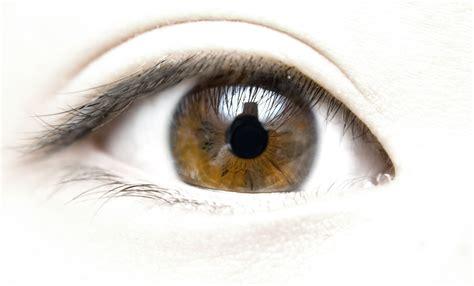 Imagenes De Ojos Sin Fondo | 191 ojos secos 4 ejercicios y 7 consejos para aliviar las