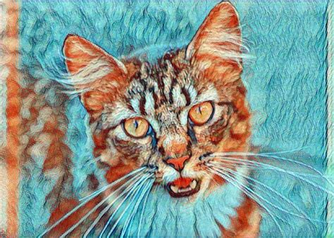 Color Painting by Lunapic Free Online Photo Editor Van Gogh