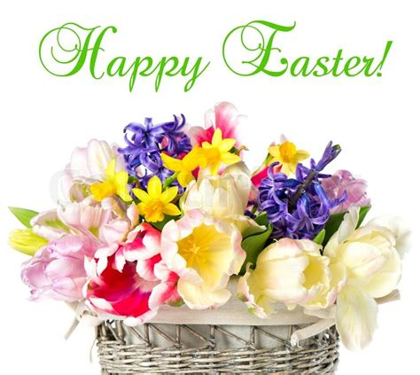 Easter Flowers by Easter Flowers High Definition Images Free