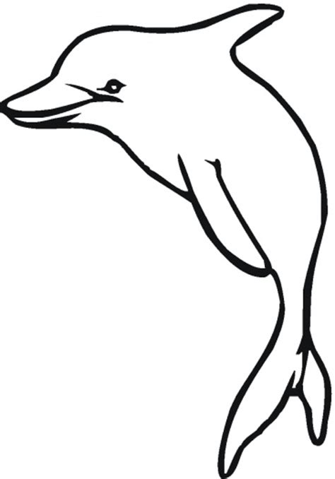 shamu coloring pages clipart best