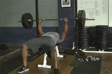 bench press gif get stronger faster with these bench press tweaks yahoo