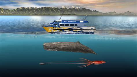 giant squid attacks fishing boat der pottwal