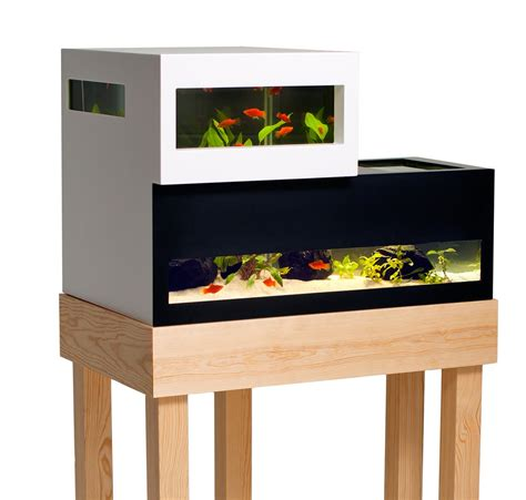 k design aquarium aquarium modern archives modern aquarium design for