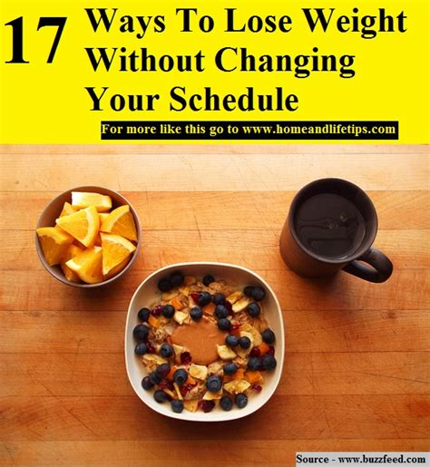 change your schedule change your how to harness the power of clock genes to lose weight optimize your workout and finally get a s sleep books 17 ways to lose weight without changing your schedule