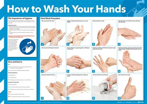 How To Wash Your by How To Wash Your Poster Seton Uk