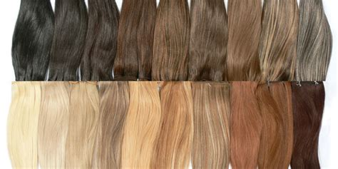 box beige brown hairs
