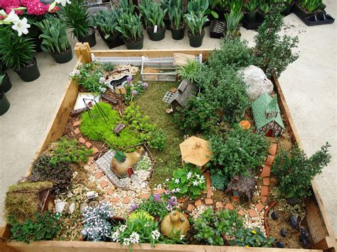 tiny garden miniature gardening town and country nurseries