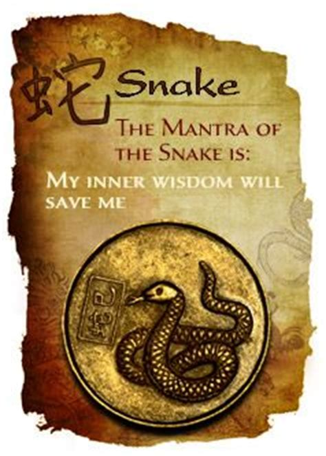 new year characteristics of the snake 25 best ideas about zodiac signs on