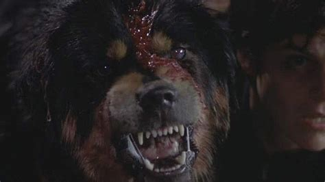 best horror the 100 best horror of the 1990s craveonline