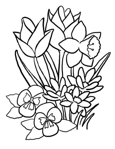 festival of colors books kwiaty kolorowanka kolorowanka do druku malowanka kolorowanki
