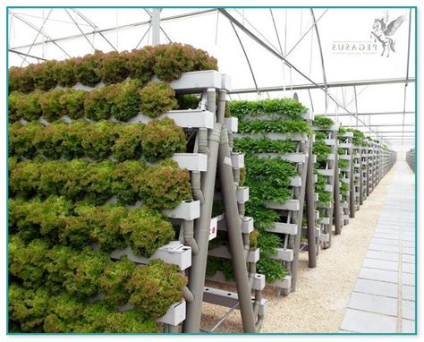 commercial vertical hydroponic systems