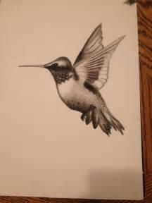 hummingbird drawing my charcoal hummingbird drawing my