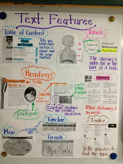 light on a hill informational text anchor charts text features anchor chart 5th grade pinterest