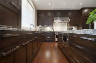 Fancy Kitchen Cabinets Contemporary Wooden Kitchen Furniture With Fancy Cabinets Decoist