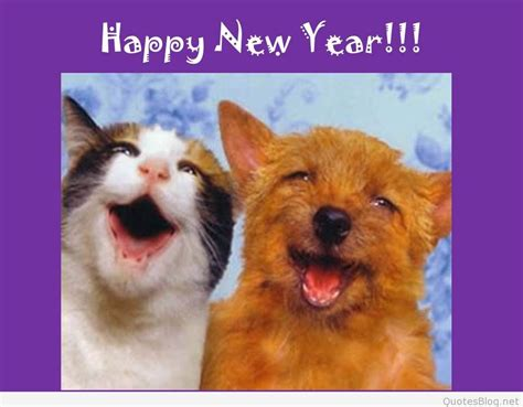 new year 2015 year animal animals happy new year wallpapers images 2016