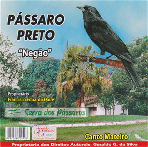 kissin on my tattoo mp3 download canto dos passaros trinca ferro boiadero