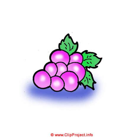 imagenes de uvas kawaii uvas dibujo