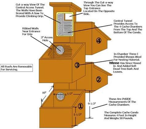 Squirrel House Plans Squirrel House Plans House List Flying Squirrel House Plans