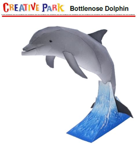 Dolphin Papercraft - bottlenose dolphin