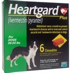 heartgard plus for dogs 26 50 lbs heartgard plus for dogs