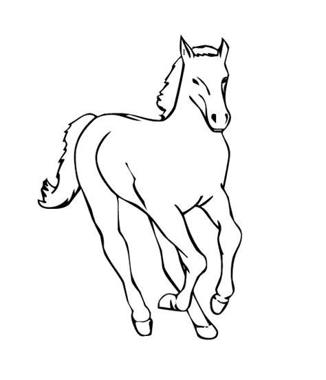 imagenes para colorear un caballo como dibujar un caballo animado imagui