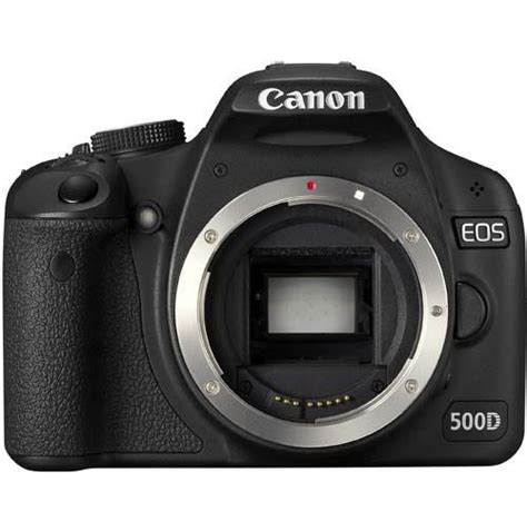 Canon 500d Only Canon Eos 500d Only Jungle