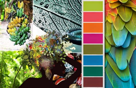 tropical colours fashion vignette trends colorworld csi dystar