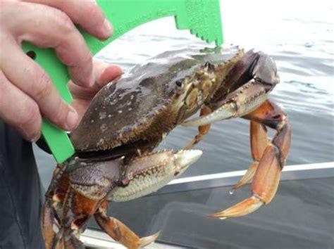 Wa St Records Petition Add Shellfish To The Wa State Fishing Records