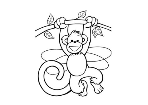 free coloring pages of cartoon monkey