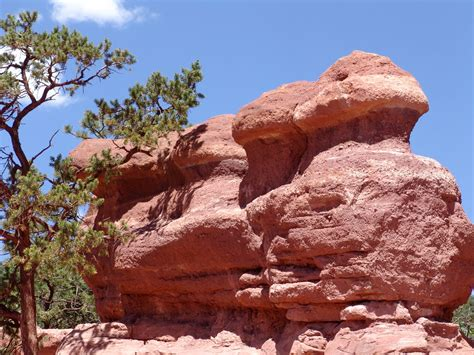 Garden Of The Gods Mcdonalds Where In The World Is The Tomato Colorado Springs