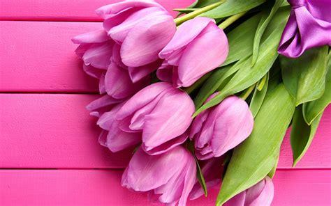 descargar fondos de pantalla flores de muchos colores hd descargar fondos de pantalla tulipanes de color rosa 4k