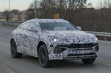 spied lamborghini urus for the time motor