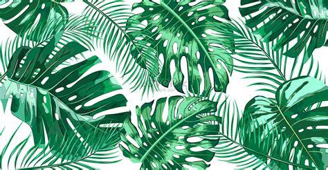 plant background tropical plant background illustration illustration image