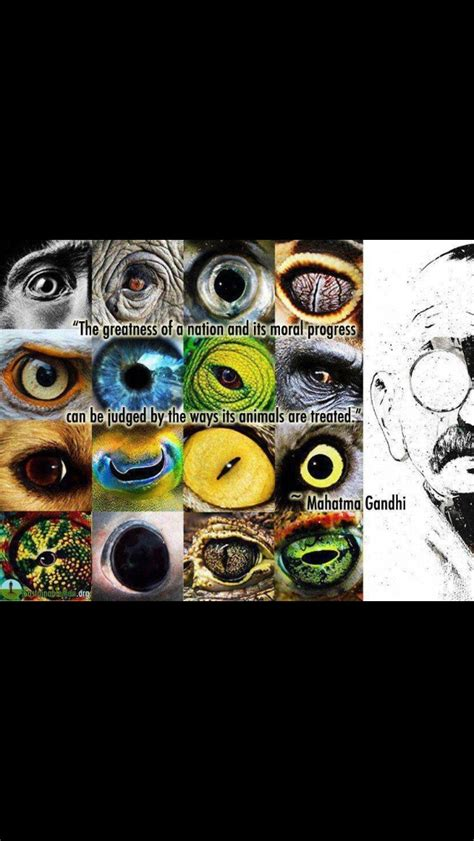 righteous tattoo jakarta 45 best images about gandhi on pinterest slow down