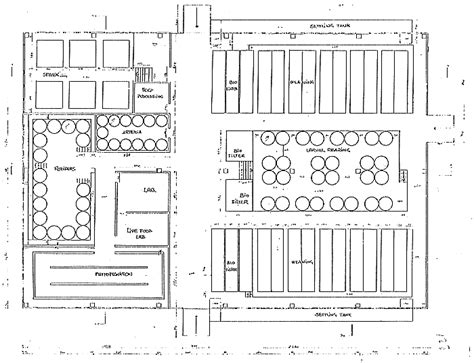 layout of sea bass hatchery an assessment of technical and economic feasibility
