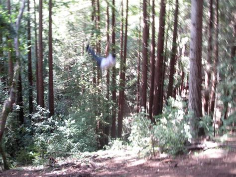 longest rope swing how to make a rope swing
