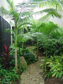 Interior Garden Plants Envirogreenery Interior Plants Office Plants For