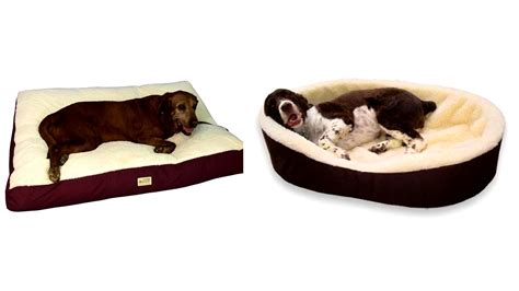 best pet beds best dog beds for arthritis korrectkritterscom