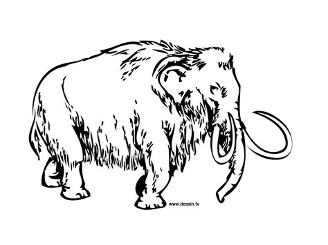 unique wooly mammoth coloring page 22 on coloring site