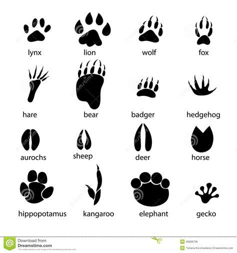 chicken foot tattoo set different animal tracks graphic footprints white background 46906758 jpg 1300 215 1390 lion