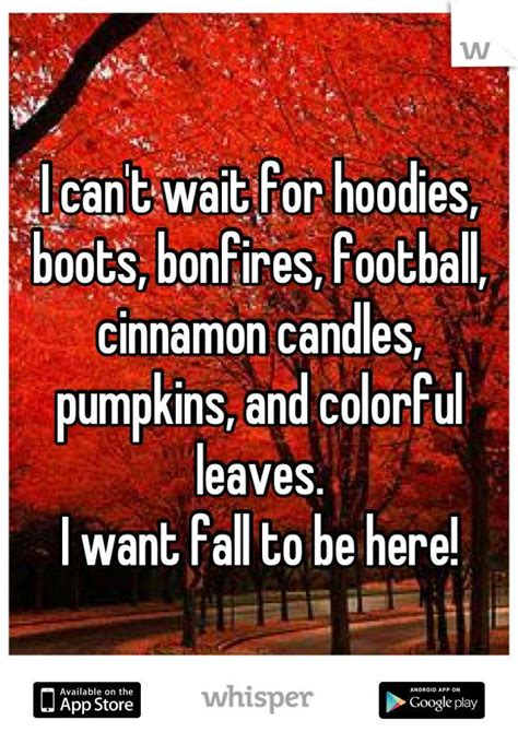 fall autumn football season whatever you want to call it it s here dental team you fall bonfire quotes quotesgram
