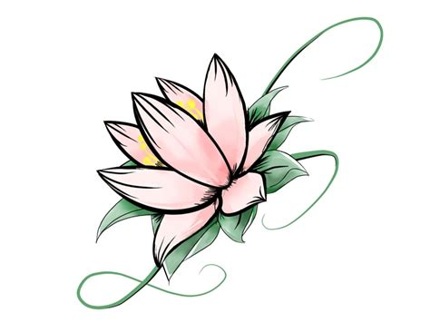design flower drawing flower drawing in pencil clipart best