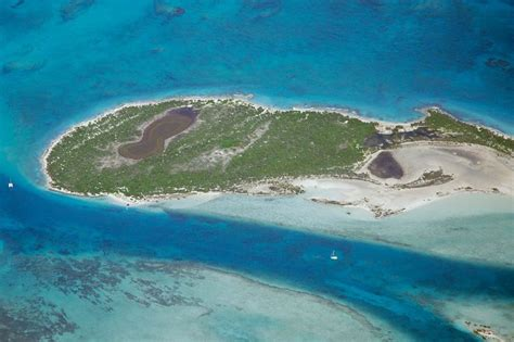 iguana island 17 best images about turks and caicos on pinterest