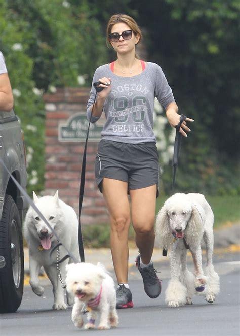 breeders in louisiana menounos walking dogs in la 02 gotceleb