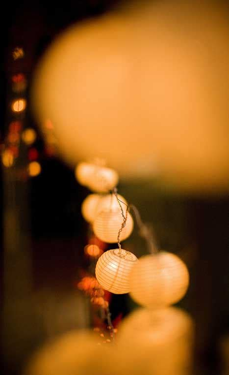 new year lanterns sydney celebrate new year in sydney