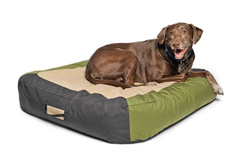 floating dog bed astropad floating dog bed by astral dog milk