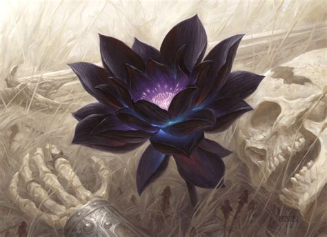 black lotus mtg ebay chris rahn black lotus on ebay