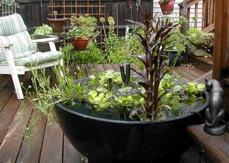 small water gardens in containers how to build a container water garden green decor and design