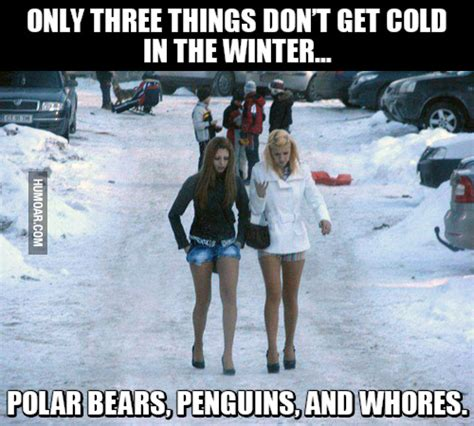 Things That Dont Get About by Only Three Things Don T Get Cold In The Winter Humoar